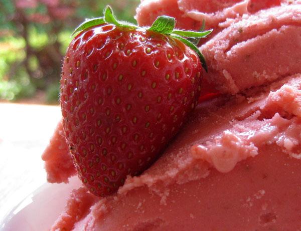 gelato-fragole-e-yogurt1