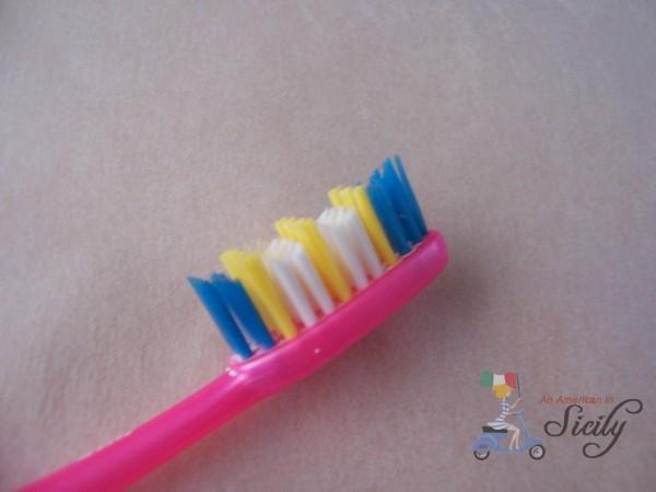 bristles